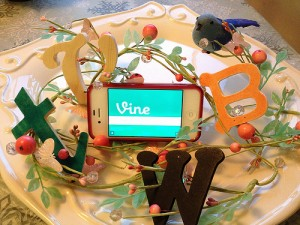vine-videos-on-your-blog-500-edited-300x225